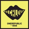 ONE REPUBLIC & SEEB